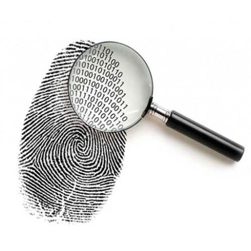بررسی یک پرونده قتل