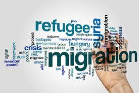 واژگان مهاجرت